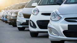Cars in a row. Used car sales