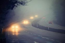 Cars in the fog