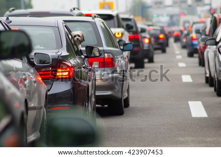 Cars on highway in traffic jam #423907453