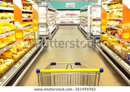cart at the grocery store