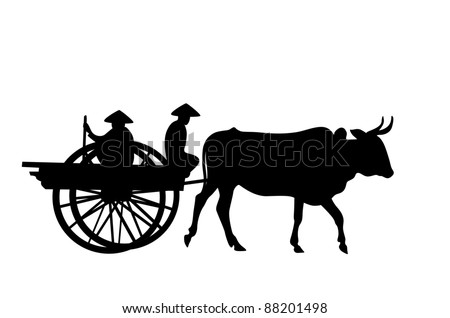 Cart harnessed by bulls