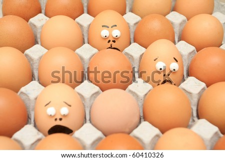 carton of eggs and different others egg