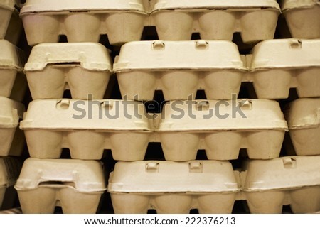 Cartons of Eggs in Grocery Store