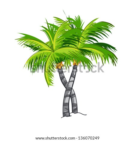 coconut tree essays Free essays on coconut tree get help with your writing 1 through 30.