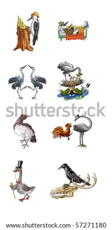 Cartoon of various birds. Hand drawing and computer processing.