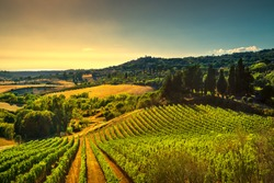 Casale Marittimo village, vineyards and countryside landscape in Maremma. Pisa Tuscany, Italy Europe.