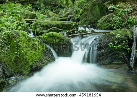 Cascade falls over mossy rocks in deep forest