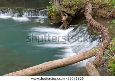 Cascade of water from a stream in the forest with a fallen tree branch crossing it.