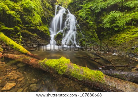 Cascade waterfall with a dead log