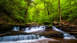 Cascades and bright spring greens on Glen Leigh, in Ricketts Glen State Park, Pennsylvania.