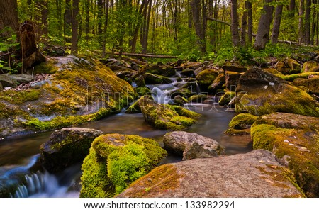 Cascades on South River, Shenandoah National Park, Virginia