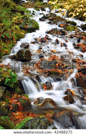 stock-photo-cascading-waterfall-and-autumn-leaves-fall-river-landscape-42488275.jpg