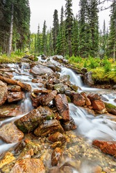 Cascading waterfall from mountain stream along the East Opabin Trail at Lake O'Hara in the Canadian Rockies of Yoho National Park.