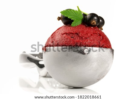 Cassis Sorbet in a Scoop on white Background Photo stock ©