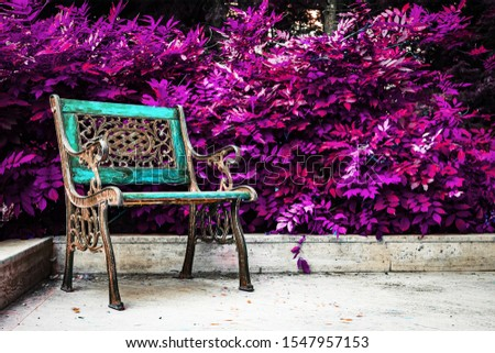 Cast iron garden armchair in front of the purple leaves. Fantasy gothic garden. Lonely autumn concept. Mystic  corner.