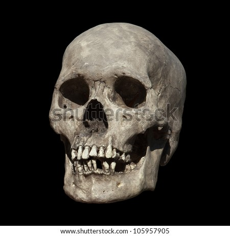 Cast of a weathered human skull isolated on black