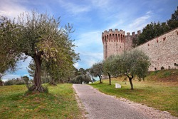 Castiglione del Lago, Perugia, Umbria, Italy: landscape of the shore of Trasimeno lake with the medieval fortress and olive trees for oil production