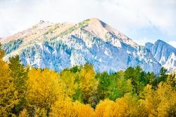 Castle Creek road view of green orange yellow foliage aspen trees in Colorado rocky mountains autumn fall peak
