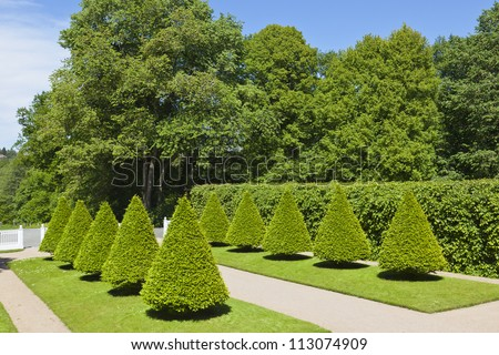 Castle garden with cone shaped trimmed trees