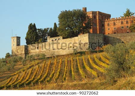 castle of Brolio and vineyards in Chianti, Tuscany, Italy,Europe