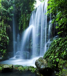 Castle ruins surrounded by rainforest gardens, right beside a stunning waterfall.