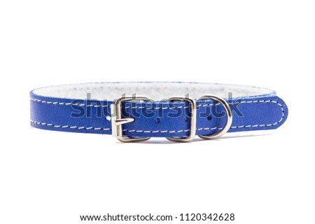 Cat and dog collar isolated on white