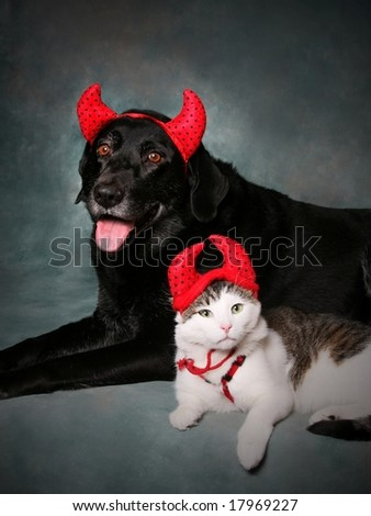 Cat and Dog Wearing Devil Halloween Costumes