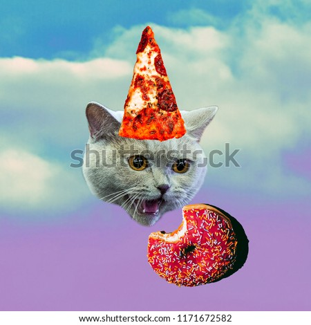 Cat and food. Contemporary art collage. Funny Fast food minimal project