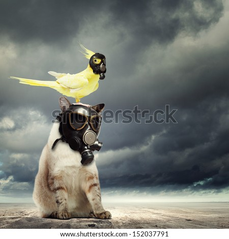 Cat and parrot in gas masks. Ecology concept