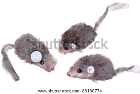 Cat Fishing Toy - Mouse on Rope with Pole on White Background . Toy mouse on white
