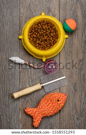 Cat food, brush and toys on wooden background, top view. Healthy nutrition, grooming and playtime for your frisky feline friend. #1558551293