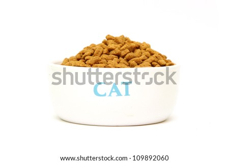 Cat food in bowl isolated on white