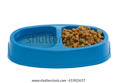 Cat food in plastic bowl