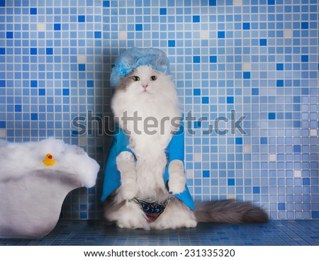 cat in the hat for the hair in the shower