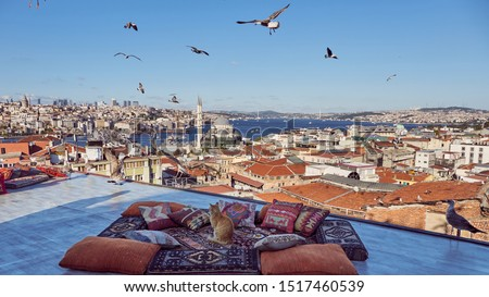 Cat is posing on traditional turkish carpet and pillows with Istanbul panorama background. Taken on terrace near Eminonu region of Istanbul, Turkey