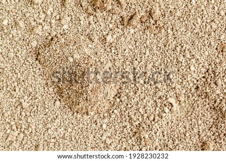 Cat litter background texture. Sand for pets toilet Сток-фото ©