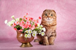 Cat near a vase with flowers