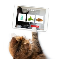 Cat ordering online by internet for home delivery. Paw on tablet with a shopping product selection. Concept for pets using technology,  or animals imitating humans. Isolated on white.
