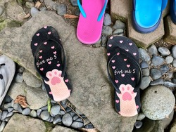 cat paws style flipflop on the ground