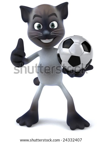 Cat playing football
