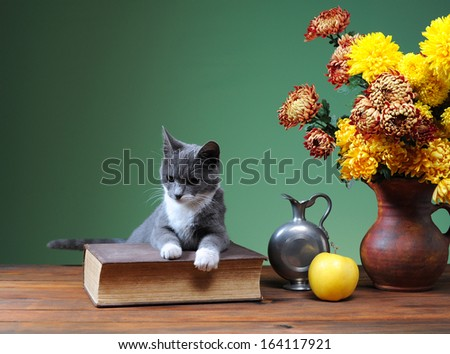 Cat posing next to flowers and books