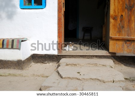 Cat resting in the doorway of the village house