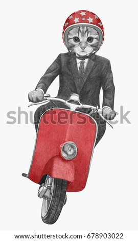 Cat rides scooter. Hand-drawn illustration.