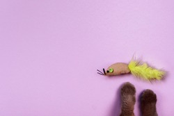 Cat's paws and a toy mouse on the violet background. Copy space. Items, products and toys for pet. Pet shop concept.
