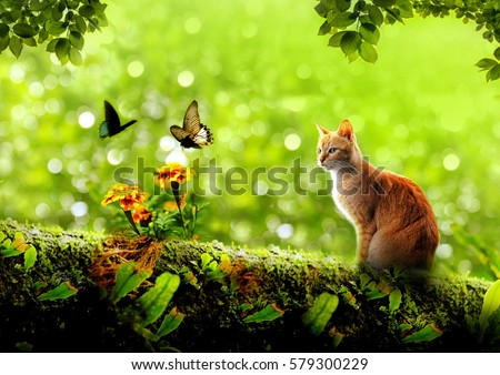 cat sitting on a tree branch company of butterfly and flower with leaves frame on top look like in wonderland #579300229