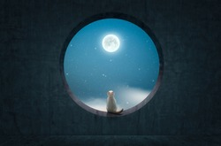 Cat sitting on rounded concrete window and look up to the moon .