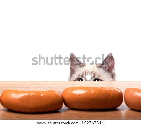 cat tries to steal a sausage from the table