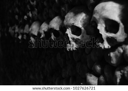 Catacombs Skulls Black And White Paris France