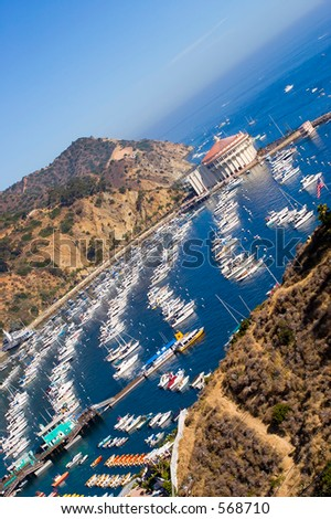 Catalina island with rows of boats