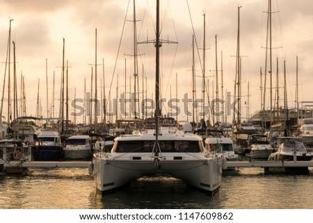 Catamaran moored in Mediterranean marina next to other sailing boats at sunset #1147609862